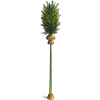 Broom Palm